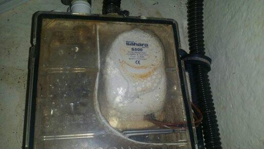 Kompletely Kustom Marine Pump